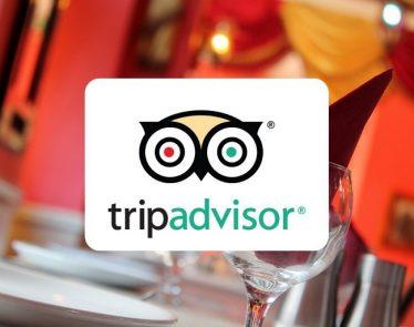 TripAdvisor's stock